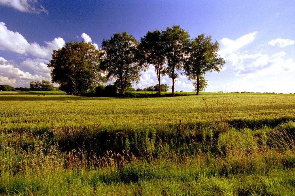 de-achterhoek-landschap